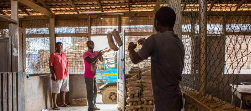 Challenges Worldwide volunteers work with small entrepreneurs, like this yam salesman
